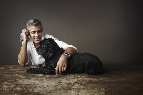 The Story Of How George Clooney's Rescue Dog Went From Homeless To A Villa In Italy