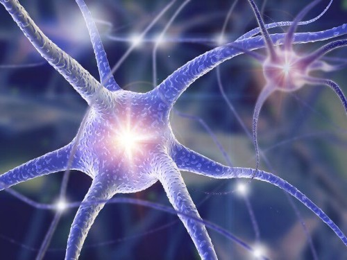 Hacking The Brain — Restoring Lost Abilities With The Latest Neurotechnologies