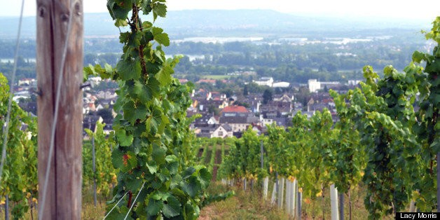 A Comprehensive Guide to Getting Saucy in Germany's Wine Regions | HuffPost Life