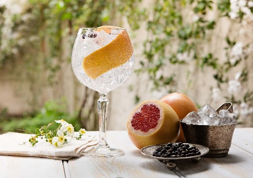 The Ultimate Gin and Tonic