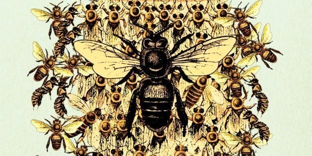 The Book We're Talking About: 'The Bees' By Laline Paull