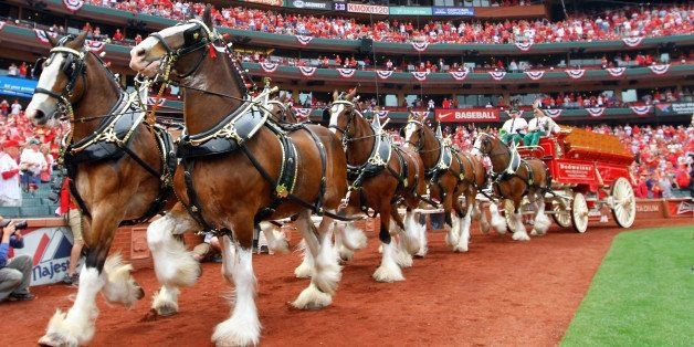 Budweiser Cans Clydesdales For EDM, Zombies And Jay-Z