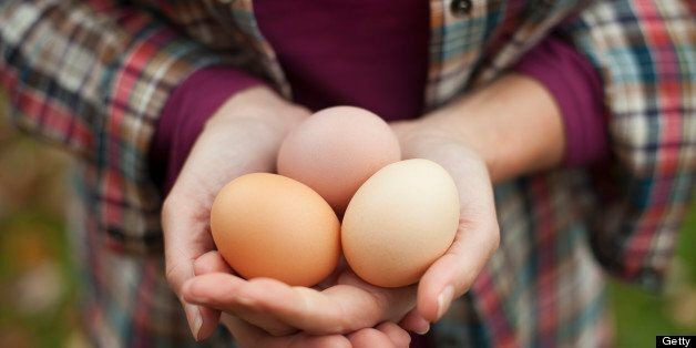 7 Things You Probably Didn't Know About Eggs | HuffPost Life