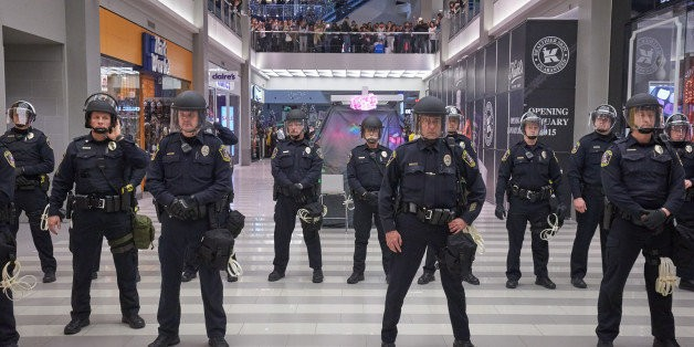 The Logic of the Police State