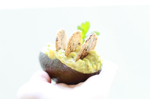 Quickie Guacamole-Hummus Appetizer