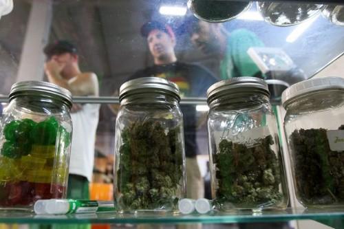 Homeland Security Secretary Thinks Marijuana Is 'Not A Factor In The Drug War'