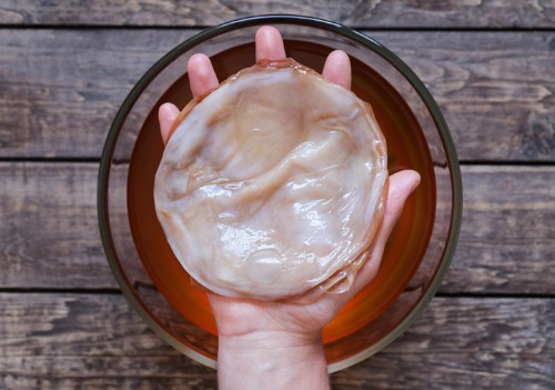What Is Kombucha, Anyway? If You Still Don't Know, Now You Will.