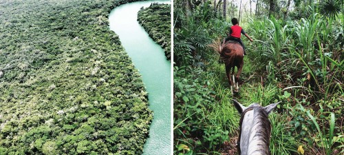 Finding Food and Adventure: Belize