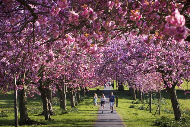 UK Weather: It Was A Record-Breaking Easter Sunday, And Monday's Forecast Is Just As Good
