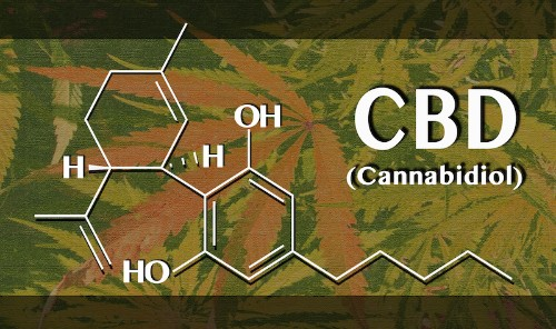 Researching Marijuana for Therapeutic Purposes: The Potential Promise of Cannabidiol (CBD)