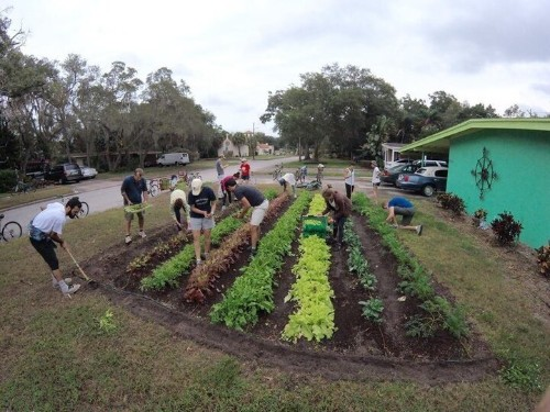 Florida Lawns Are Being Transformed Into Edible Farms