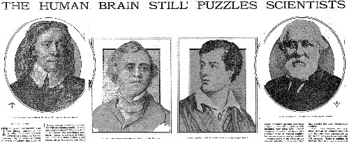 New puzzles for brain scientists