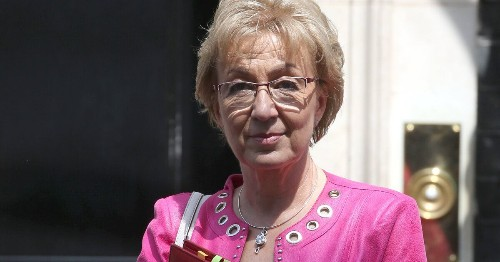 Andrea Leadsom Resigns From Cabinet Over Theresa May's Brexit Plan