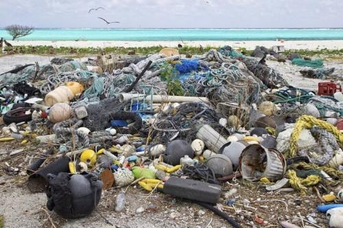 'Biodegradable' Plastics Are A Big Fat Lie