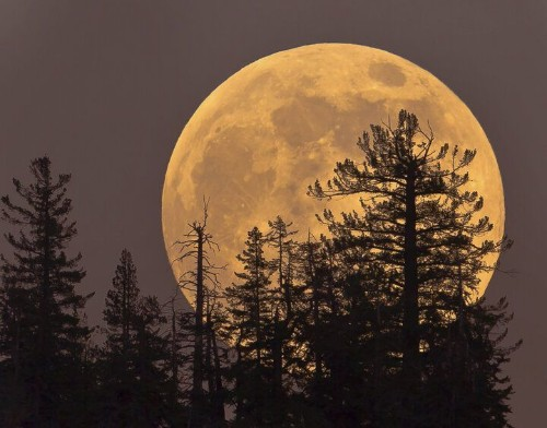 A Supermoon Like This One Won't Come Again Until 2034