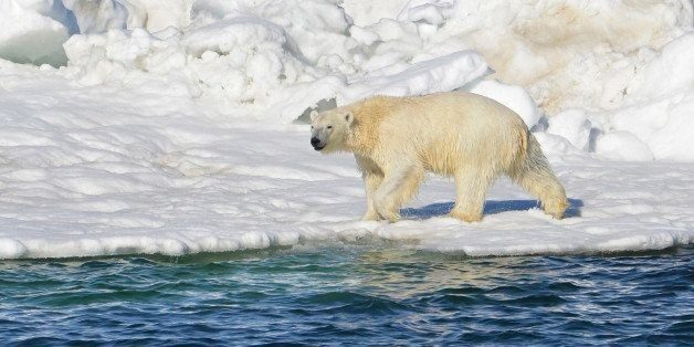 The Arctic Is Speaking Truths About Climate Change. Is Anyone Listening?