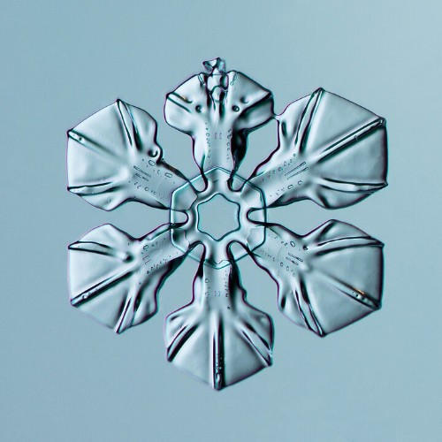 Winter Sucks, But Close Up Photos Of Snowflakes Will Blow You Away
