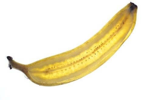 These Magical Bananas Taste Exactly Like Ice Cream   HuffPost Life