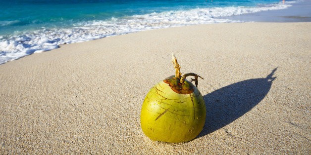 Police Detain Coconut In Maldives For Potentially Tampering With Presidential Election
