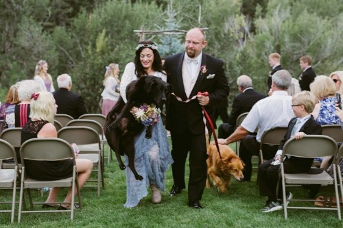 Bride's 15-Year-Old Dog Made It To Her Wedding Just Before He Died
