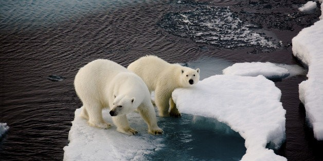 Why Is the 'Climate President' Approving More Oil Drilling?