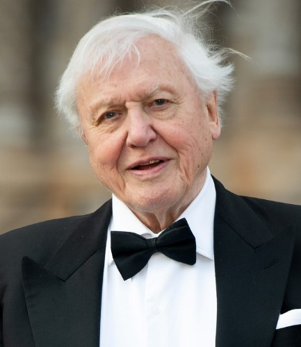 David Attenborough Warns Of 'Man-Made Disaster On A Global Scale' In New Climate Change Film