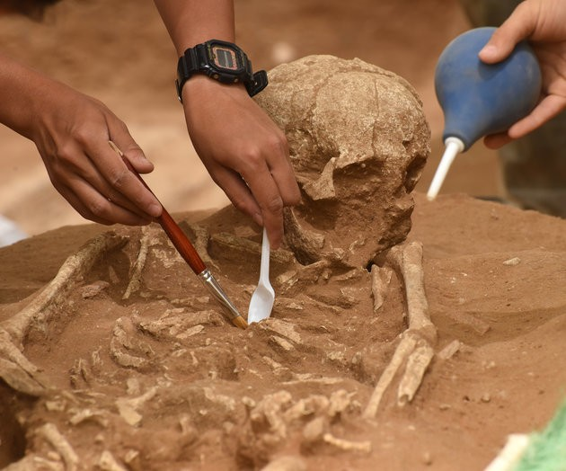 Ancient Philistine Cemetery Could Solve Biblical Mystery