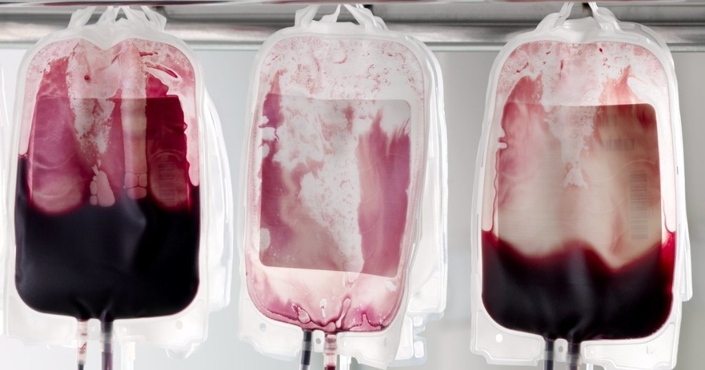 What It Would Take To End The Ban On Queer Blood Donation