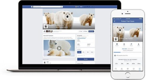 Facebook's New Donate Tool Lets Users Give Without Leaving The Site
