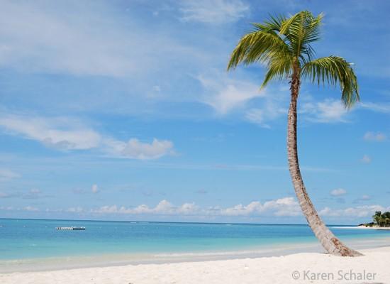 Top 10 Money Saving Holiday Travel Tips (VIDEO)
