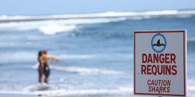 The Most Dangerous Beaches for Shark Attacks in the U.S. | HuffPost Life