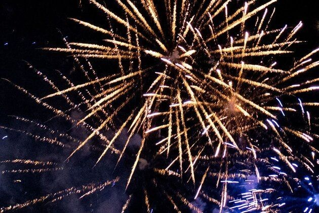 What You Need To Know About Keeping Pets Safe On Bonfire Night