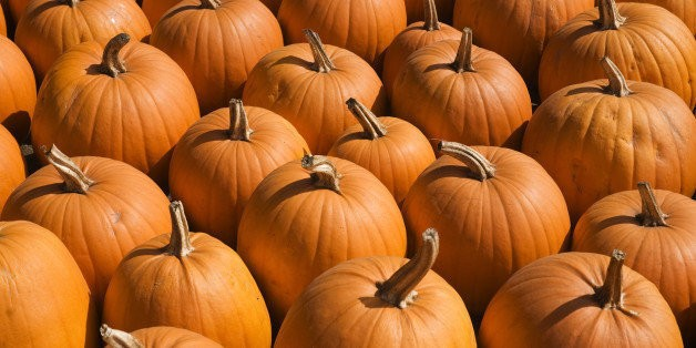 Recipe Roundup: 5 Favorite Pumpkin Recipes | HuffPost Life