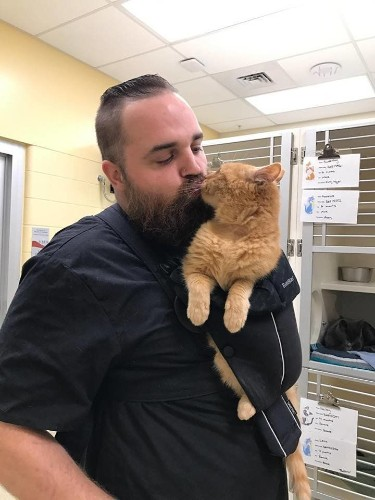 Shelter Finds Perfect Solution For Sweet Senior Cat Who Just Wants To Be Held