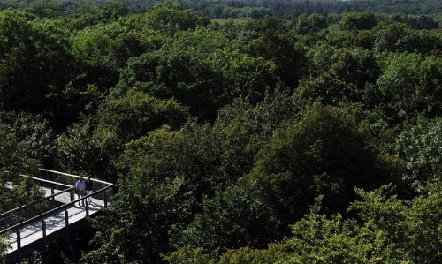 Top Treetop Hotels | HuffPost Life