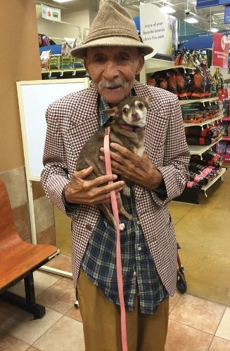 World War II Vet And Scared Chihuahua Find True Love, Together