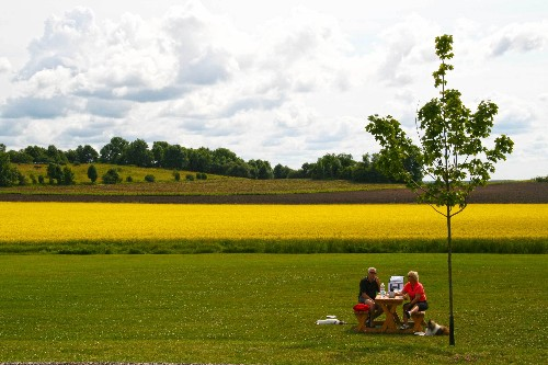 Family Road Trip Through Denmark and Southern Sweden