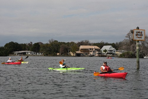 Yeehaw! See the Sea Cow Roundup in Florida's Citrus County