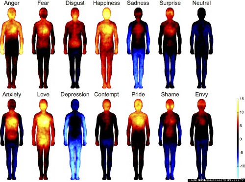 Where Your Body 'Feels' Emotions Revealed In New Study (VIDEO)