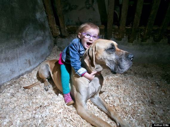 Charlie, Gentle Great Dane, Is Able To Instinctually Identify 3-Year-Old Brianna Lynch's Oncoming Seizures (PHOTO)
