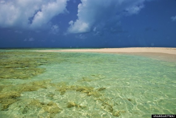 Barbuda Is The Best Caribbean Island You're Not Going To