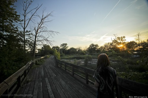 Forgotten In Time: Detroit's Abandoned Belle Isle Zoo (PHOTOS)