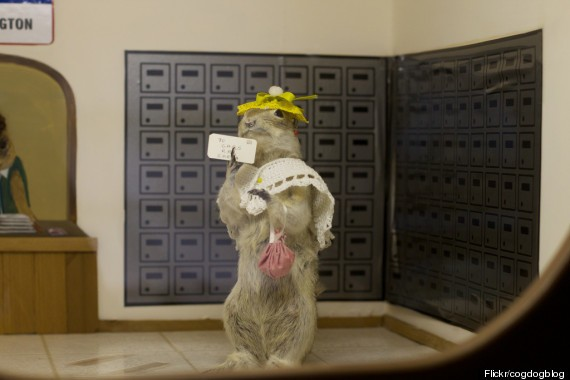 The Gopher Hole Museum In Canada Is One Furry Freak Show You HAVE To See