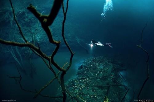 Underwater River Is A Scuba Diver's Dream -- Cenote Angelita, Mexico