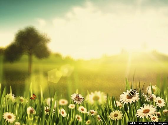 Daily Meditation: Kiss The Earth
