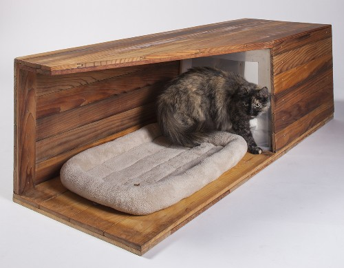 Top Architects Design Cat Houses, The World Is Right Again