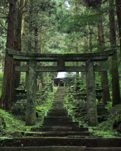 7 Things Japan Can Teach You About Living A Long, Healthy Life