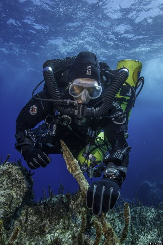 New Treasures Recovered From The 'Titanic Of The Ancient World'