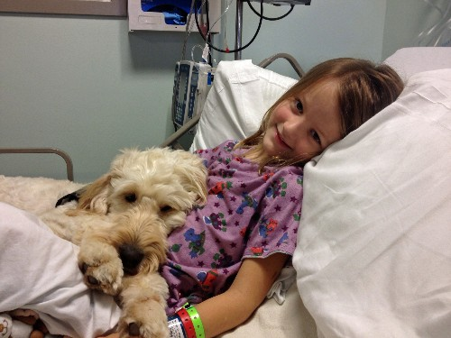 Goldendoodle Helps 7-Year-Old Girl, Meghan Weingarth, With Deadly Nut Allergy (PHOTOS)