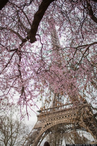 Paris Is Perfect In Spring And These Photos Prove It